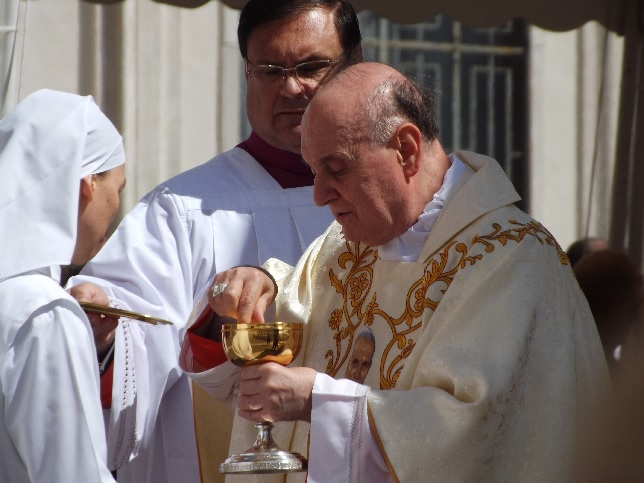 Sfinte Liturghii de mulțumire pentru canonizarea lui Ioan al XXIII-lea și Ioan Paul al II-lea
