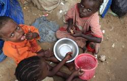 Cu mâncarea care se aruncă s-ar putea hrăni întreaga lume