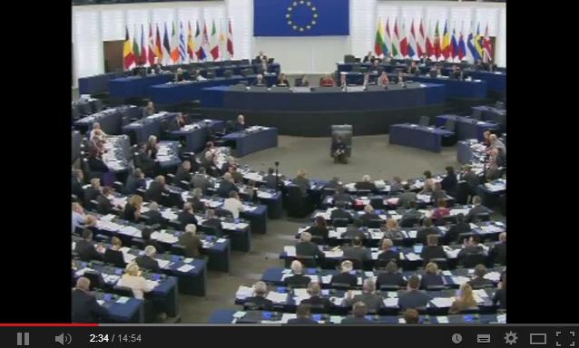 """Parlamentul European - Reacţii dure la proiectul de lege """"Estrela"""""""