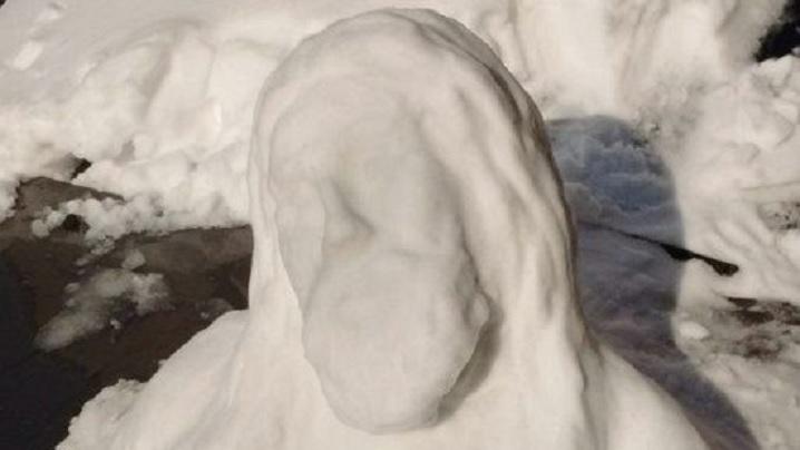 Odată cu zăpada, chipul lui Isus a apărut pe capota unei mașini