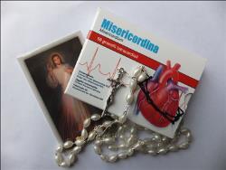 """Misericordina"" - medicament spiritual distribuit după ""Angelus"""