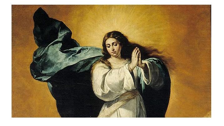 Considerații omiletice la solemnitatea Neprihănitei Zămisliri