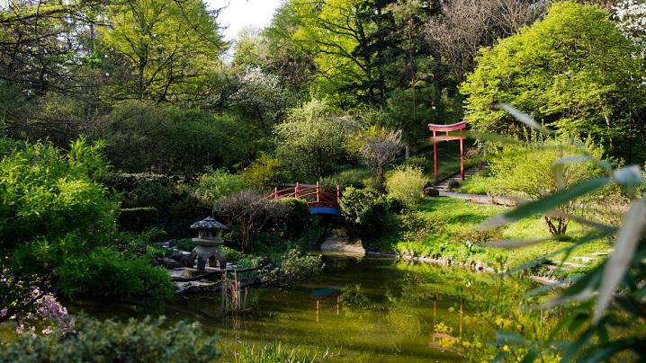 Grădina botanică din Cluj a fost înființată de un preot greco-catolic