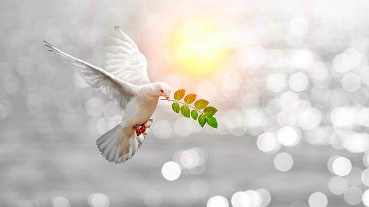 E complicat să trăiești în pace? Marii sfinți au câteva idei