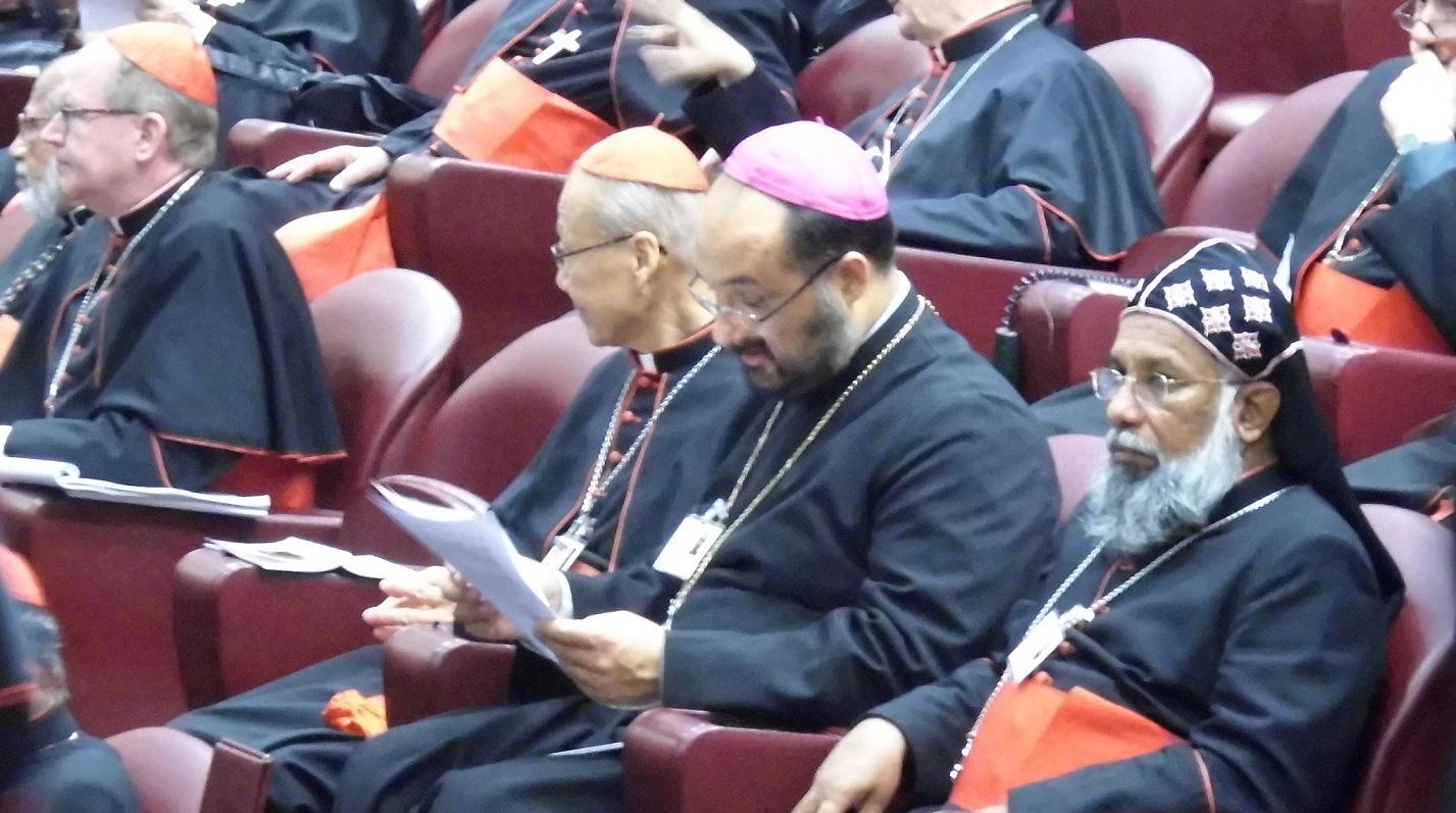 Pr. Federico Lombardi, despre Sinodul dedicat Familiei