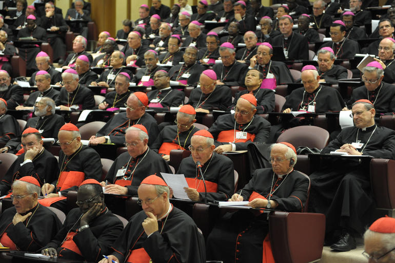 Viitorul Sinod al Episcopilor dedicat Familiei