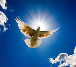 Bucuria, semnul distinctiv al creștinului