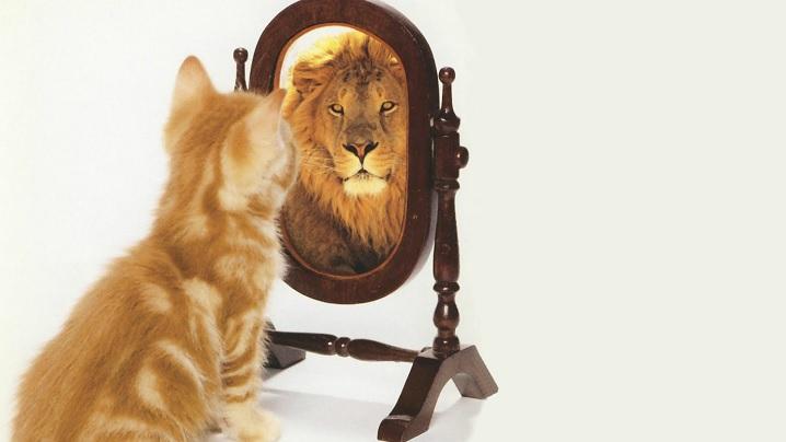 Stima de sine – teamă sau bucurie!
